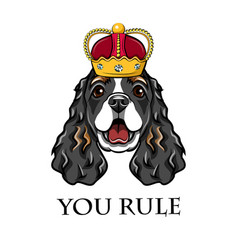 cocker spaniel wearing in crown king dog vector image