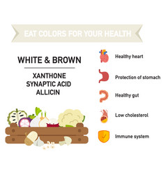 Eat colors for your health-white amp brown vector