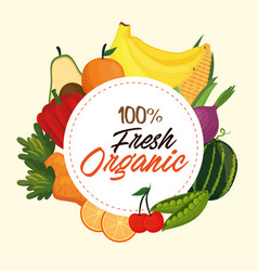 fresh vegetables and fruits healthy food vector image