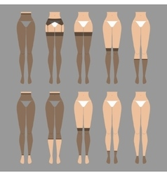 Hosiery elements - tights vector image vector image