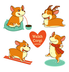 set of welsh corgi character in vector image