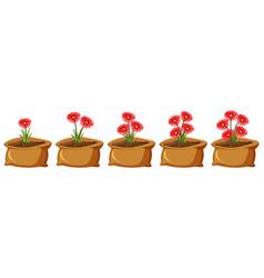 set red flowers in brown bags vector image