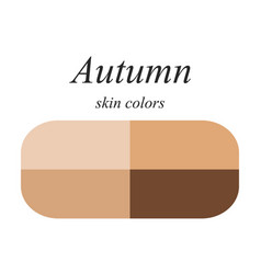 Skin colors for autumn type vector