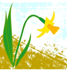 Card with one daffodil vector