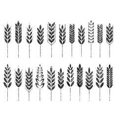 Grain cereal icon shape grunge black vector