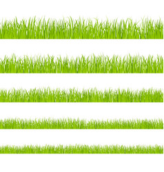 green grass landscaped lawns meadows border vector image