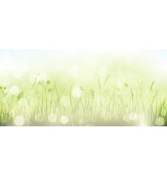 Green spring grass sky bokeh background vector