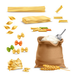 Realistic pasta wheat spikelets flour vector