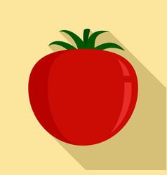 tomato food icon flat style vector image