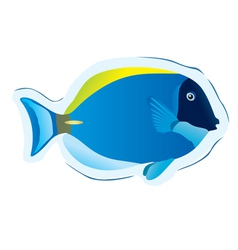 Tropical fish surgeon vector