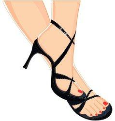 female sandals vector image