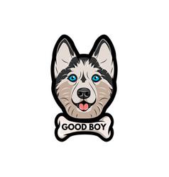 husky dog with bone good boy lettering vector image