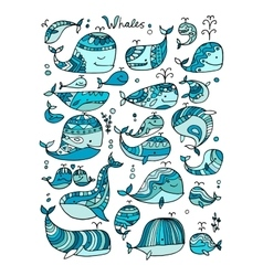 Whales collection sketch for your design vector image