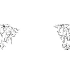 botanical elements design template panoramic vector image