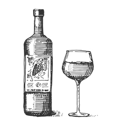 bottles and glass wine engraved vector image