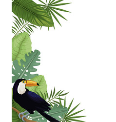 card toucan tropical palm leaves decoration vector image