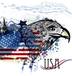 eagle with american flag symbol usa vector image