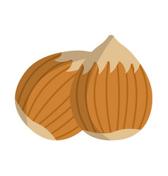 hazelnut icon food with healthy fats and oils vector image