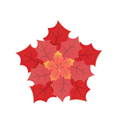 leaves of different size and red shades vector image