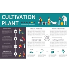 Plant Cultivation infographic flat vector image