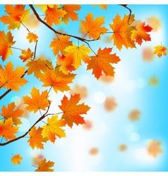 Red and yellow leaves against blue sky EPS 8 vector