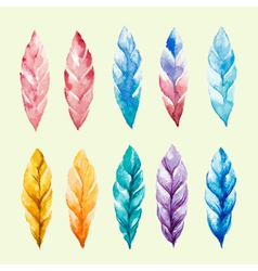 Set of colored watercolor feathers vector image