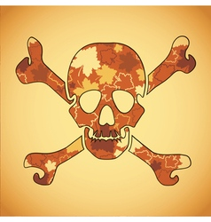 skull with colorful leaves vector image vector image