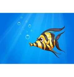 A striped colored fish under the sea vector image