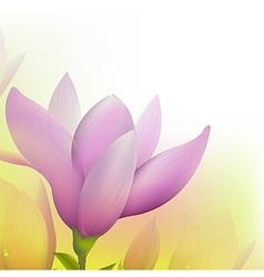 Abstract magnolia vector
