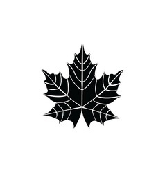 leaf - vector image