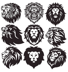 lion logo set collection premium pack vector image