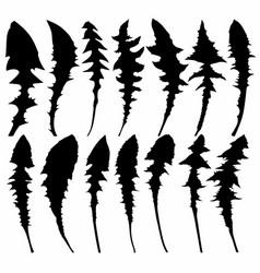 Set leaves dandelion vector