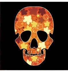 skull with colorful leaves vector image
