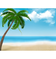 Palm tree holiday background vector image