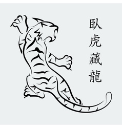 tiger White background vector image