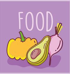 Food slice avocado pumpkin and radish background vector