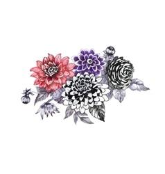 Hand drawing chrysanthemum flowers sketch vector