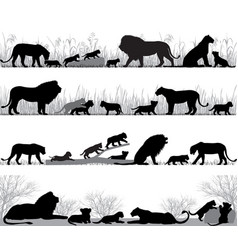 lions family silhouette vector image