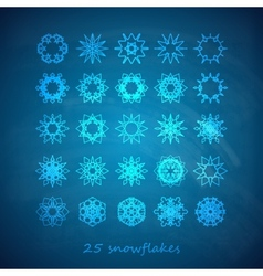 Set of 25 graceful snowflakes on the blue frosty vector