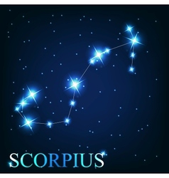 the scorpius zodiac sign of the beautiful bright vector image