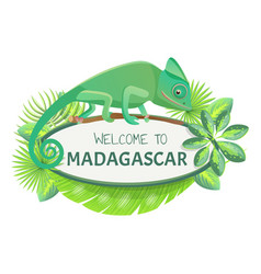 welcome to madagascar banner vector image
