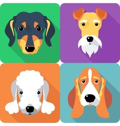 Set dogs icon flat design vector