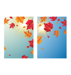 autumn leaves with sunlight background vector image
