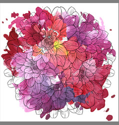 drawing flower lily vector image