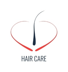 Hair care follicle icon vector image