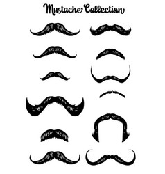 handdrawn mustache collection vector image