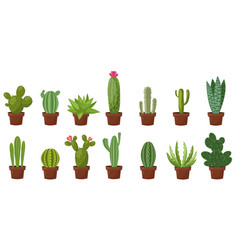 Horizontal banner set of desert room green cactus vector