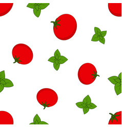 pattern with basil and tomato vector image