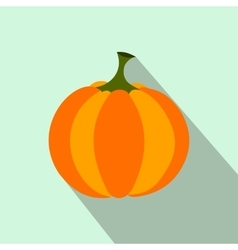 Pumpkin flat icon vector image