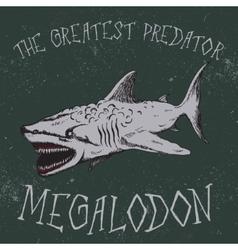Vintage label with shark-Megalodon vector image